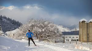 nordic skiing technique how to skate ski jans com