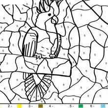 animal color number coloring pages coloring pages printable