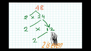 factor tree method factors and multiples for grade 5 part 2