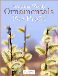 woody ornamentals profitable plants digest