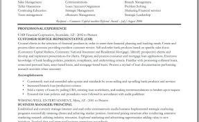 resume marvelous bank teller resume bullet points satisfactory