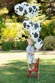 cow print balloons party reveal sweet backyard barn birthday bash