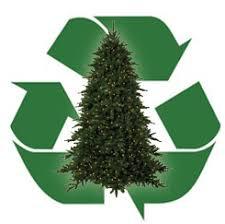 tree recycling available in oak ridge oak ridge today
