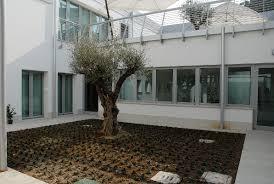 giardini interni casa casa con giardino interno giardino d inverno idee chic per