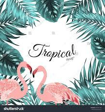 tropical design border frame template stock vector