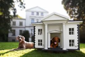 Igloo Dog House Small The Ultimate Luxurious Dog Houses