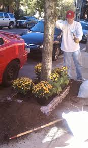 city garden ideas information and inspiration to help beautify