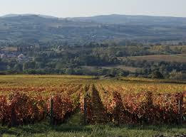 op a chambre d agriculture manoir bonpassageburgundy vineyards manoir bonpassage