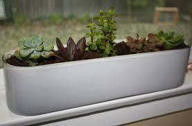 Kitchen Windowsill Window Planters Indoor Brilliant Best 20 Indoor Window Boxes