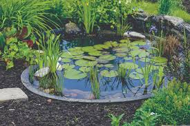build the perfect garden pond laguna ponds