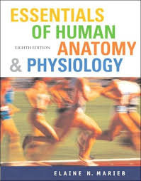 Holes Human Anatomy And Physiology 13th Edition Holes Human Anatomy And Physiology Book Periodic Tables