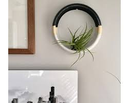 wall hanging air plant holder large wall hanging planter