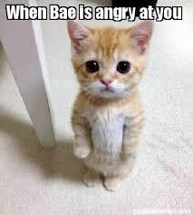 Angry Cat Meme Generator - meme creator when bae is angry at you meme generator at