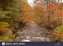 fall color stream blue ridge mountains north