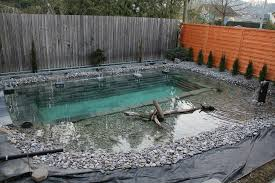 Backyard Swimming Ponds - his idea for a backyard seems crazy at first but after seeing the