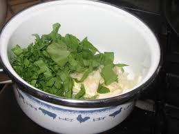 cuisiner l oseille fraiche saumon à l oseille fraîche enfin j ai trouvé cette herbacée bon ap