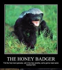 Meme Honey Badger - the honey badger very demotivational demotivational posters