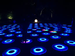 enchanted forest of light tickets enchanted forest of light debuts at descanso gardens pasadena