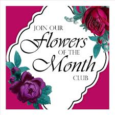 flowers of the month flowers of the month club seasonal fresh flowers delivered every