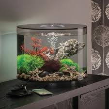 r j enterprises fusion 50 gallon aquarium tank and cabinet black aquariums you ll love wayfair