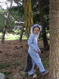 Toddler Wolf Halloween Costume Grey Wolf Halloween Kids Costume Boys Girls Toddler