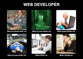 Web Developer Meme - image 251275 what people think i do what i really do know