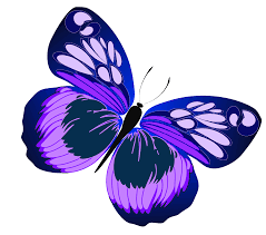 clip art butterfly clipartiki 3 cliparting com