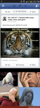 Eye Of The Tiger Meme - did you know tigers have false eyes by ben meme center