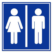 The Bathroom Bill by Bathroom Bill That Takes Aim At Transgender Floridians Moves