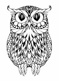 hnard owl coloring pages coloring page