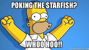 Starfish Meme - poking the starfish whoo hoo happy homer make a meme