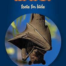 bat facts for kids book clouducated non fiction book for kids