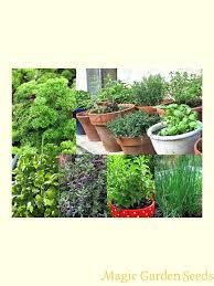 Window Sill Garden Inspiration Window Sill Herb Garden Kits Steps To Successfully Grow A