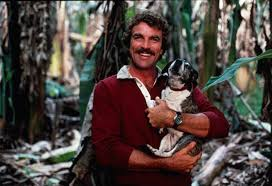 magnum pi year magnum p i reboot planned at abc today s our take