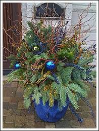 winter container great for the front porch gardening and
