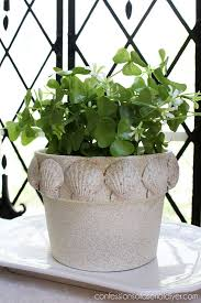 Challenge Plant Pot Give A Terra Cotta Pot A Beachy Makeover With Faux Spray