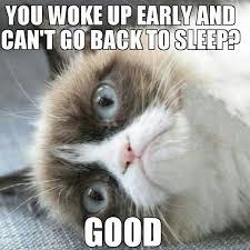 Depressed Cat Meme - cat depression symptoms eight ways to tell if your pet needs cat