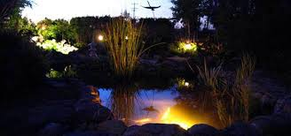 Submersible Pond Lights Led Pond Lighting