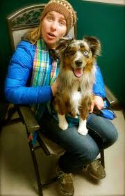 australian shepherd weight at 8 months raising a mini aussie how long does it take a mini to be full