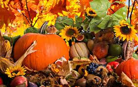 pumpkin desktop wallpapers 2560x1600 246 33 kb