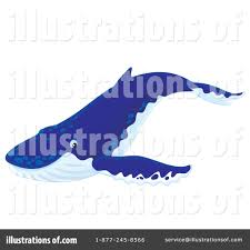 humpback whale clipart 1125448 illustration by alex bannykh