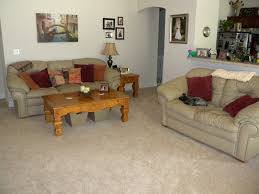 amazing carpeting ideas for living room with living room