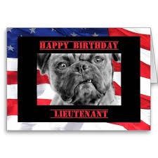 1656 best pug birthday ideas images on birthday ideas