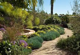 drought resistant landscaping plans u2014 jbeedesigns outdoor nice