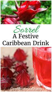 sorrel a festive caribbean drink caribbean co