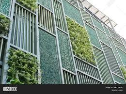 green facade vertical garden image u0026 photo bigstock