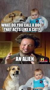 Meme Aliens Generator - dad joke dog meme imgflip
