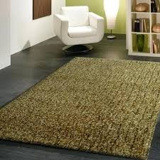 Pet Friendly Area Rugs Awesome Fluffy White Area Rug Rugs Decoration In Modern Wonderful