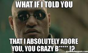 Are You Crazy Meme - what if i told you that i absolutely adore you you crazy b
