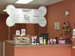 best 25 grooming salon ideas on pinterest grooming shop dog